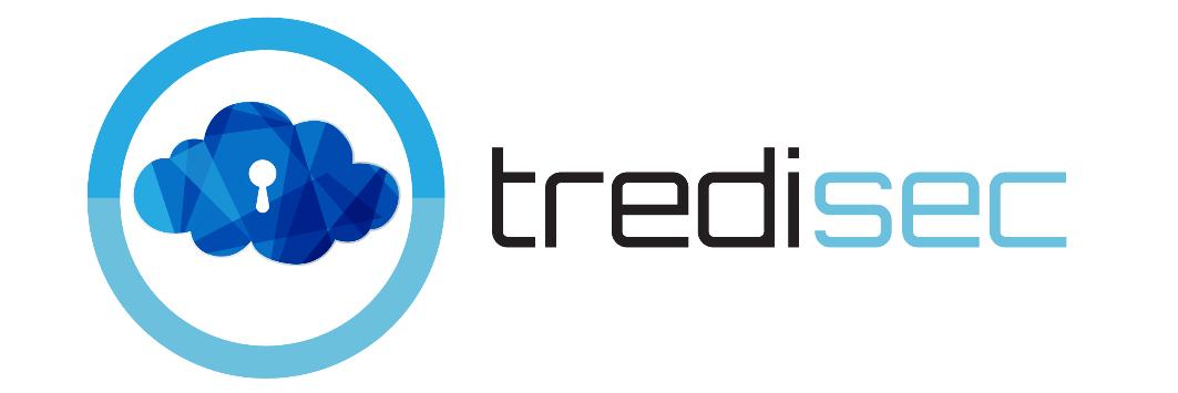 tredisec300x100