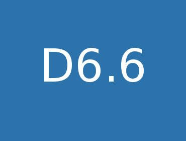 D6.6 Final Release Efficient Implementation of Selected Components